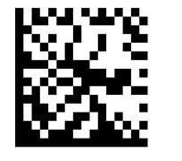 Datamatrix码